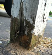 fence post rot